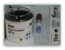 esterilizacion-esporas